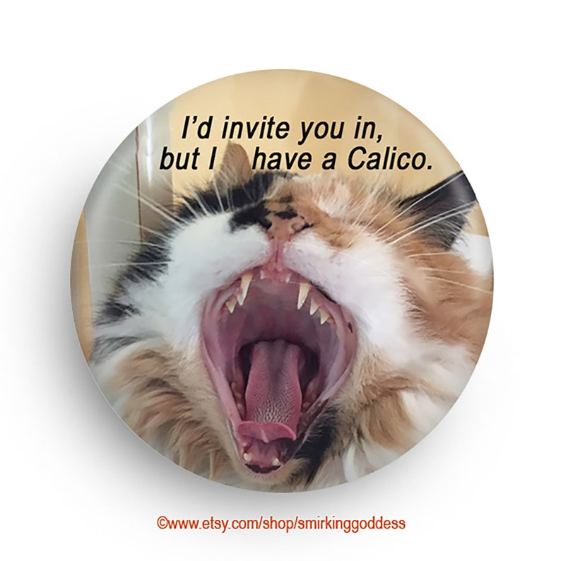 Funny Cat Magnet or Pinback for Calico Owner Fun Gag Gift image 0