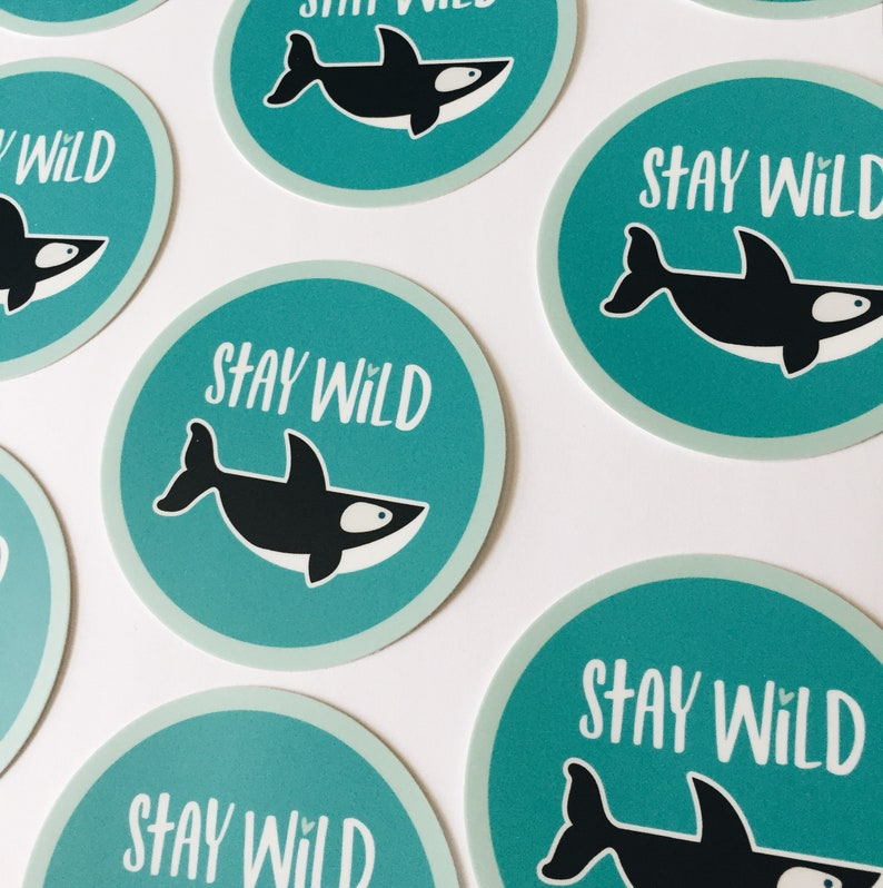 Orca whale vinyl sticker Stay Wild 3 Whale sticker image 0
