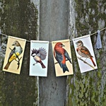 Spring Chic - Vintage bird flashcard garland