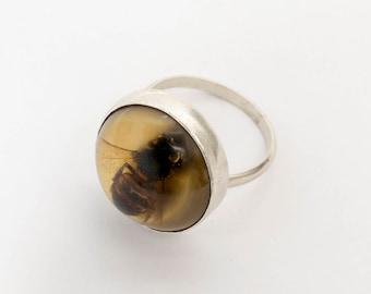 Bee Ring - Bee Jewelry - Science Jewelry - Witch Ring - Honeybee Ring - Real Insect Jewelry - Insect Ring - Bee Gift - Beekeeping - Oshun