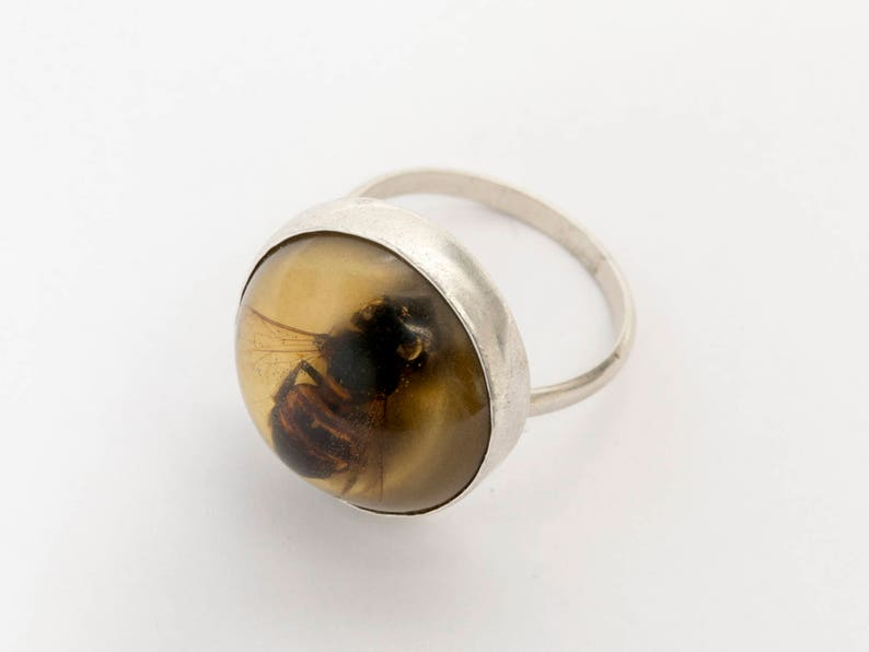 Bee Ring  Bee Jewelry  Science Jewelry  Witch Ring  image 0
