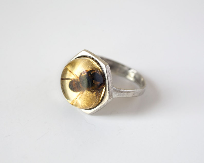 Bee Ring  Silver Bee Jewelry  Honeybee Ring  Real Insect image 0