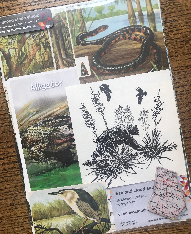 Nous Nous Nous allons voyager à la Vintage Okefenokee Swamp Géorgie Collage, planificateur et Scrapbook Kit numéro 2619 3a3a30