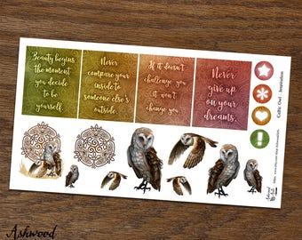 Celtic Owl Erin Condren Planner Stickers Weekly Kit