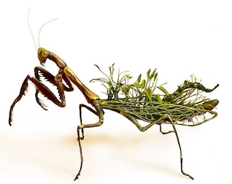 """on seeing other options (preying mantis) - Original Giclee Edition Print - 8.5x11"""""""