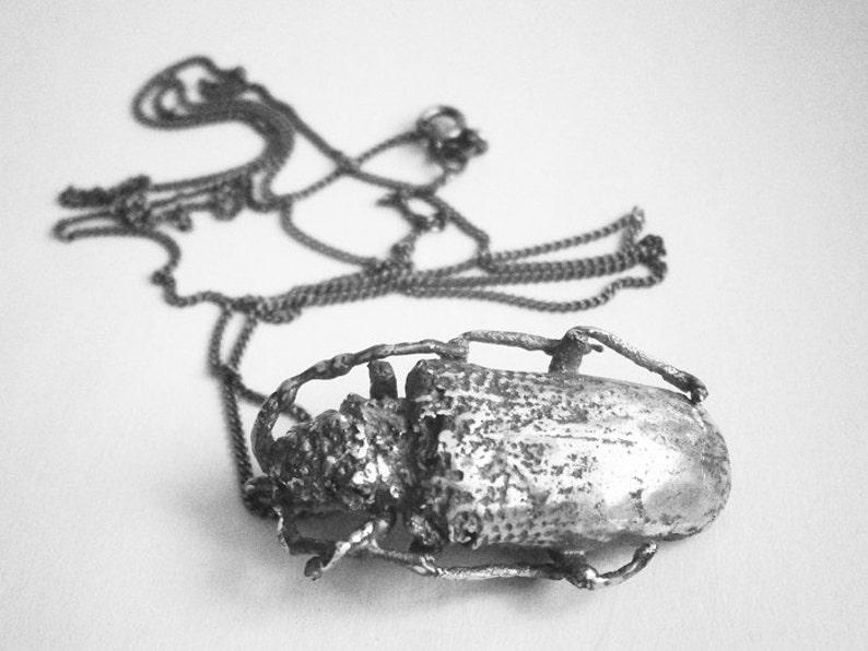 Madagascar beetle silver sterling necklace image 0