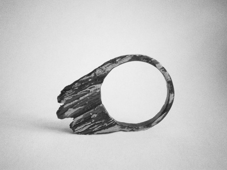 oldgrowth silver ring image 0