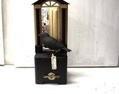 Best EVER Guaranteed  Fine Art CABINET OF CURIOSITY Mixed Media Sculpture Museum of Natural History  Bird Phrenology Museum Labels Deer Open Wood  Door Butterfly Branch Acorn Cabinet