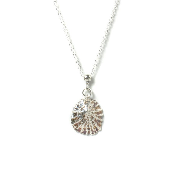 Silver Limpet Shell Necklace