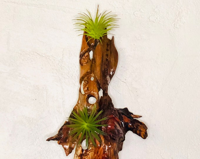 Carmen Miranda Airplant Wall Hanging #196