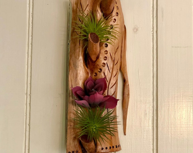 Featured listing image: Airplant Wallhanging #29