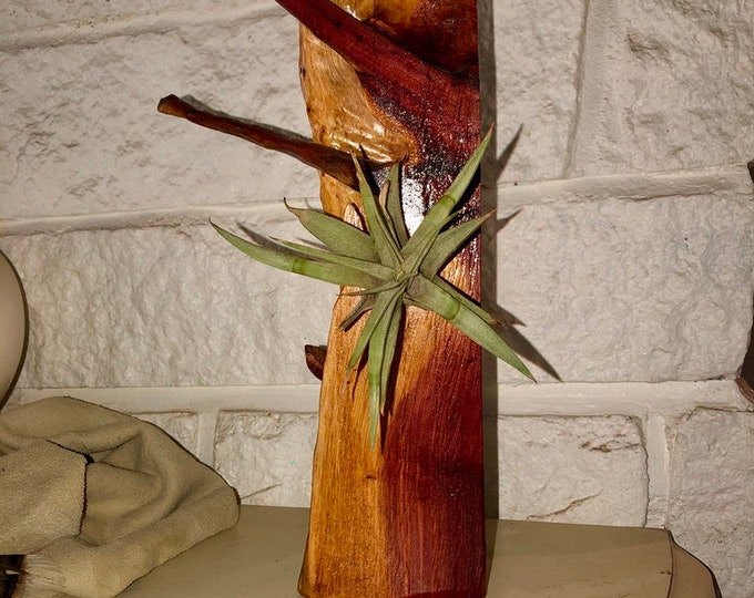 Wood Sculpture/Airplant Holder #176
