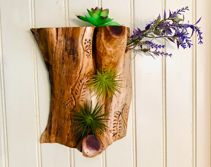 Airplant Wallhanging #39