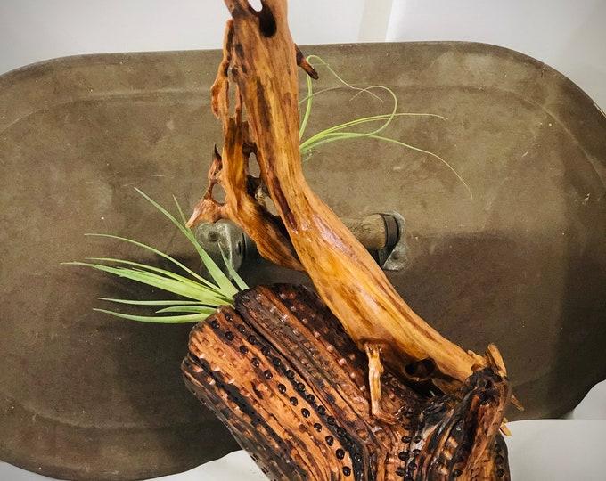 Reclining Cedar - wood sculpture #162