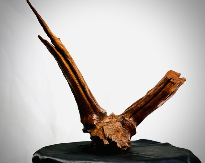 Don't Steer Me Wrong - abstract wood sculpture