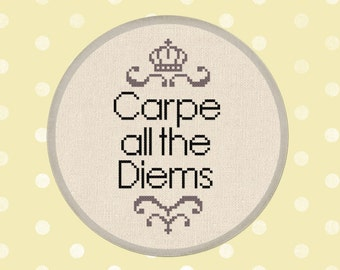 Carpe all the Diems Cross Stitch Pattern. Quote Modern Simple Cute Counted Cross Stitch Pattern PDF Instant Download