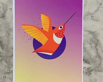Allen's Hummingbird   8x10 Original Art Print