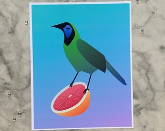 Green Jay   8x10 Original Art Print