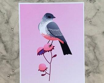 Say's Phoebe   8x10 Original Art Print