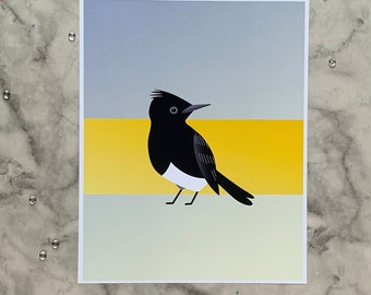 Black Phoebe | 8x10 Original Art Print