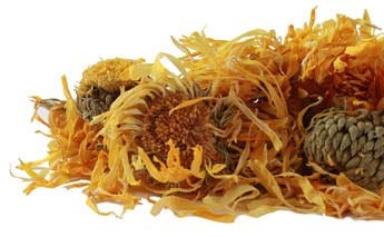 Calendula Herbal Oil Infused with Organic Calendula Petals