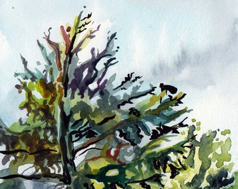 Watercolor in the Park - Original Artwork - Plein Air Painting of Trees - Row of Trees - Small Painting of Trees - Park Painting Art - Trees