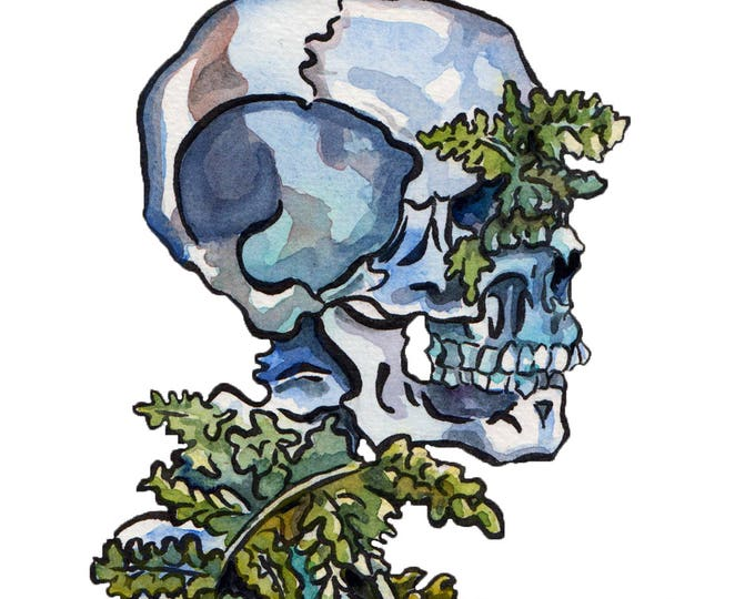 Featured listing image: Painting of Bones with Plants in It Reproduction - Watercolor and Ink Skeleton - Wooly Lip Fern in Human Remains Art Print - Memento Mori