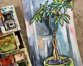 Money Tree Watercolor Painting - House Plant Art - Painting of Houseplant - Plant Lover Gift - Watercolor Postcard of a Tree - Original Art