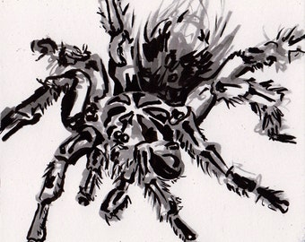 Tarantula Drawing - Ink Painting of a Spider - Black Tarantula Art - Original Inktober Art - Halloween Spider Decoration Art - Spooky Gifts