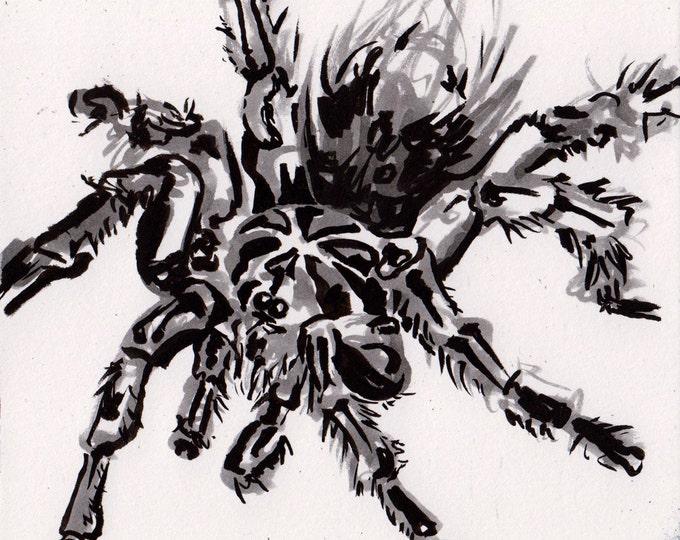 Featured listing image: Tarantula Drawing - Ink Painting of a Spider - Black Tarantula Art - Original Inktober Art - Halloween Spider Decoration Art - Spooky Gifts