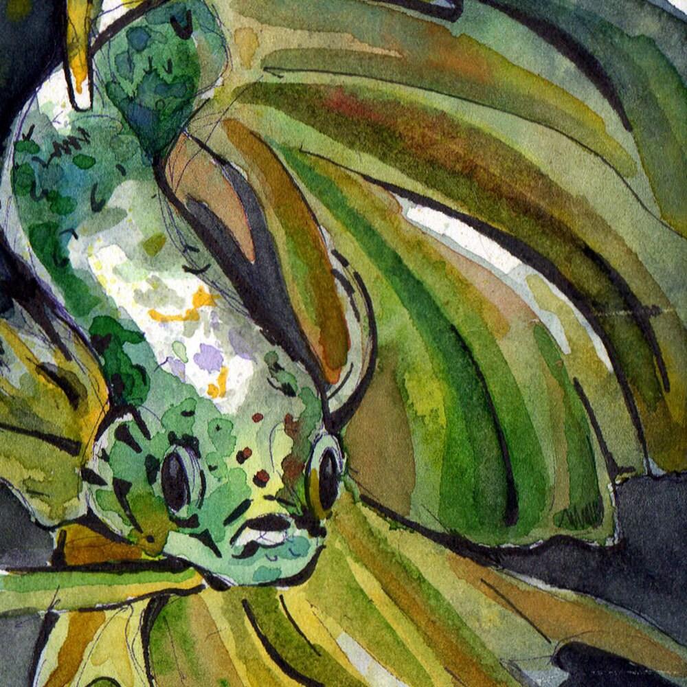 Art Print of Green Betta Fish - Print of Original Watercolor on ...