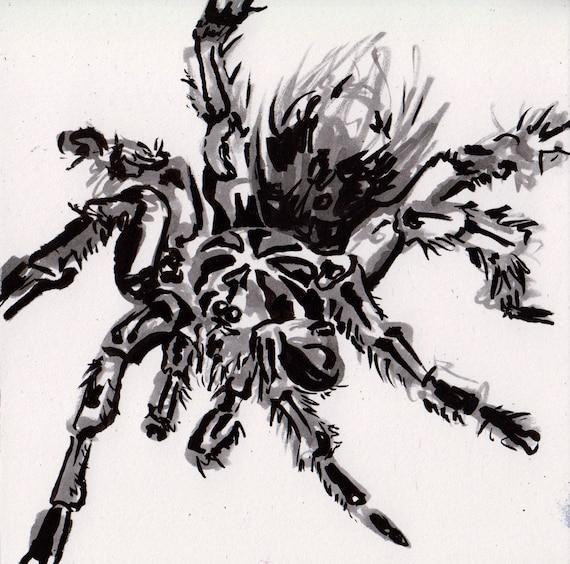 Tarantula Drawing Ink Painting Of A Spider Black Tarantula Art Original Inktober Art Halloween Spider Decoration Art Spooky Gifts