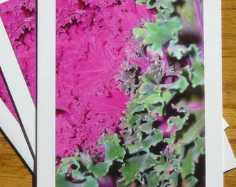 Purple Cabbage, Photo Art Card