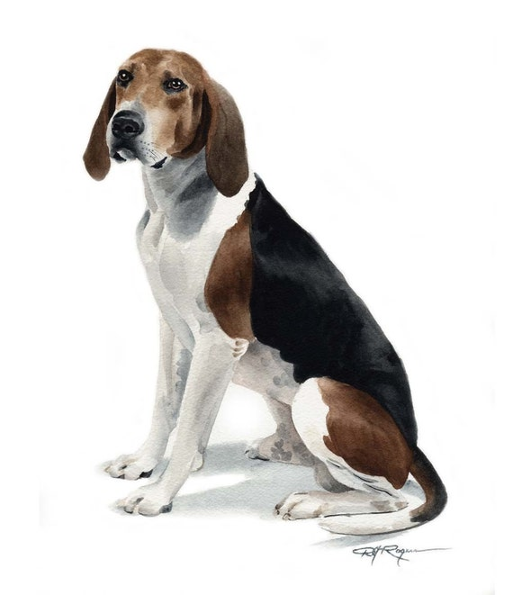 TREEING WALKER COONHOUND Dog Watercolor ART Print DJR