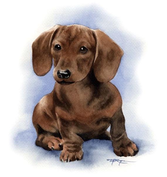 MINIATURE DACHSHUND Dog Painting ART 13 X 17 by Artist DJR