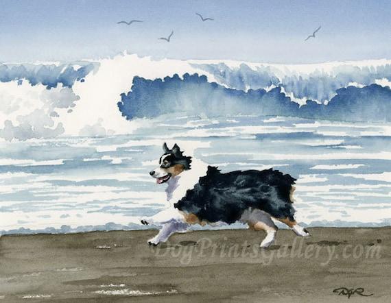 Australian Shepherd Art Print Sepia Watercolor 11 x 14 by Artist DJR