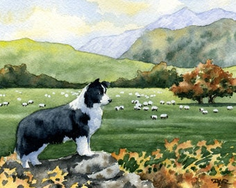 BORDER COLLIE Art Print Signed Watercolor by Artist DJ Rogers