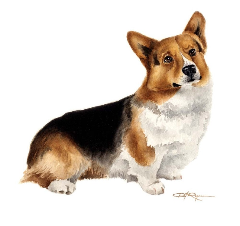 Welsh Corgi Puppy Art Print Sepia Watercolor Painting by Artist DJR