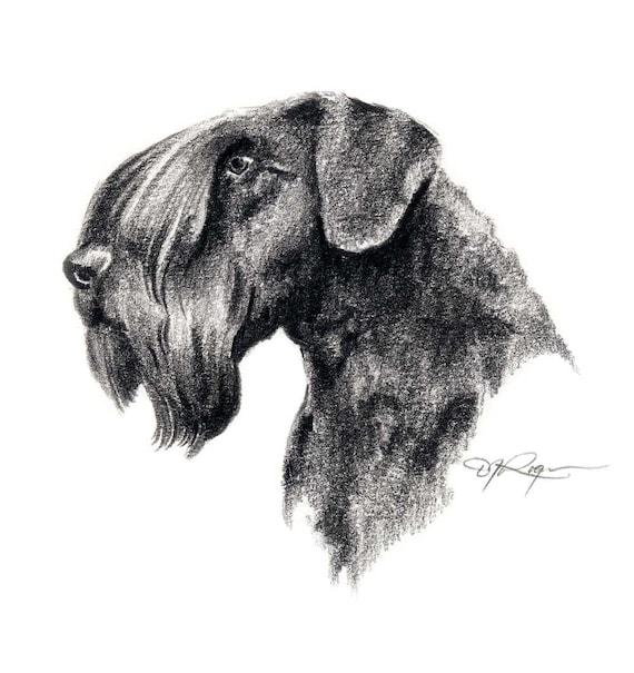 JACK RUSSELL TERRIER Pencil DOG Drawing 8 x 10 ART Print by Artist DJR