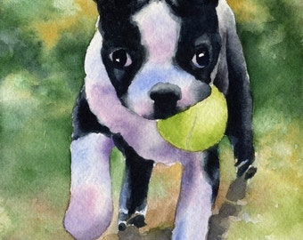 BOSTON TERRIER PUPPY Art Print Signed by Artist D J Rogers