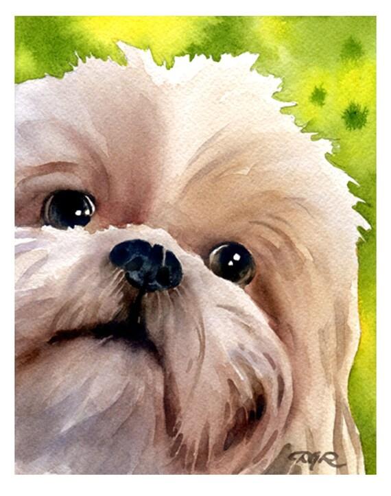 "/""GREAT PYRENEES/"" Watercolor Dog Art Print by Artist DJR"