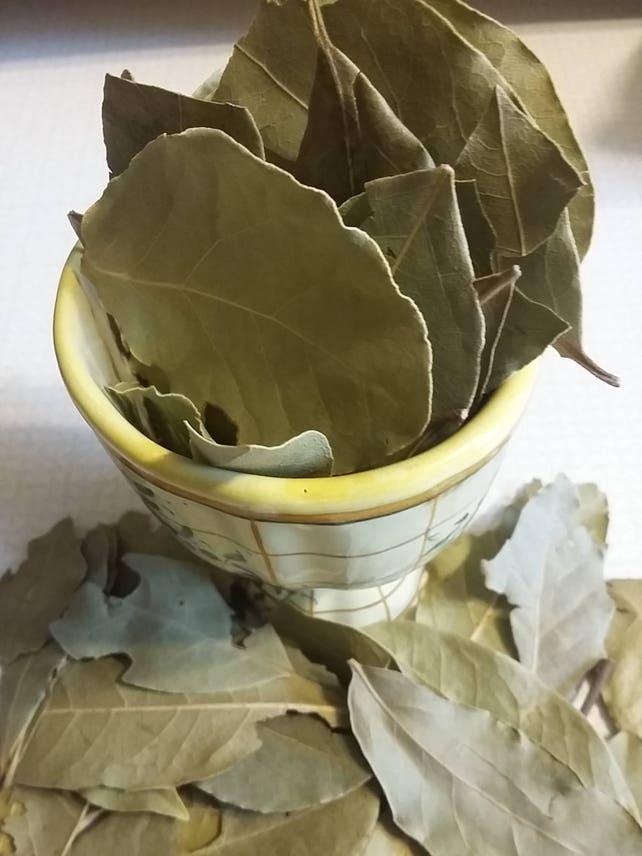 Bay Leaf, Laurus nobilis (Whole)