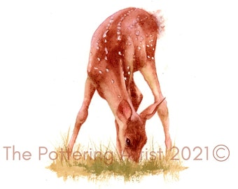 Watercolor Woodland Print - Baby Deer
