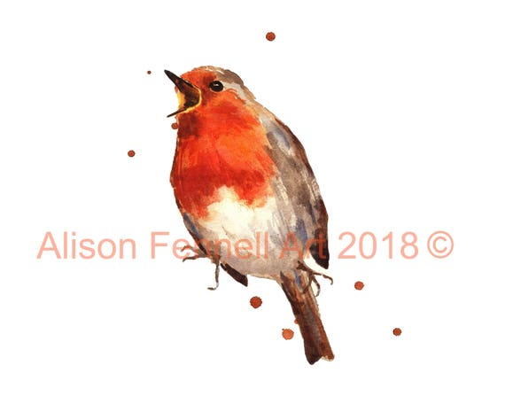 bird art prints robin bird red robin christmas decor etsy