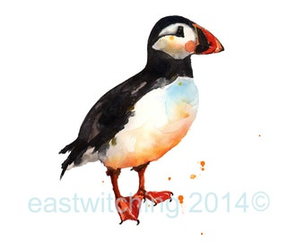 PUFFIN Watercolor Print - ready to frame 5x7 to 13x19 inches