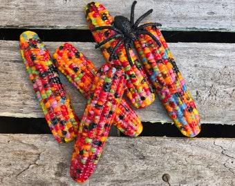 Fused/Cast Glass Calico Corn-Indian Corn - Fall-Autumn Decor