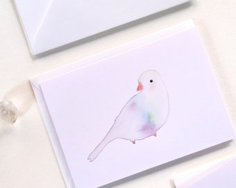Bird Notecard Set with Envelopes, Set of 6 Cards, Blank Cards, Greeting Cards, Sustainable Cards