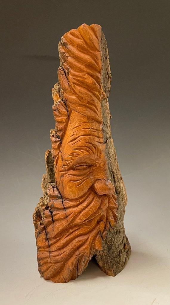 "HAND CARVED original 10"" tall hidden Wood Spirit from 100 year old Cottonwood Bark"