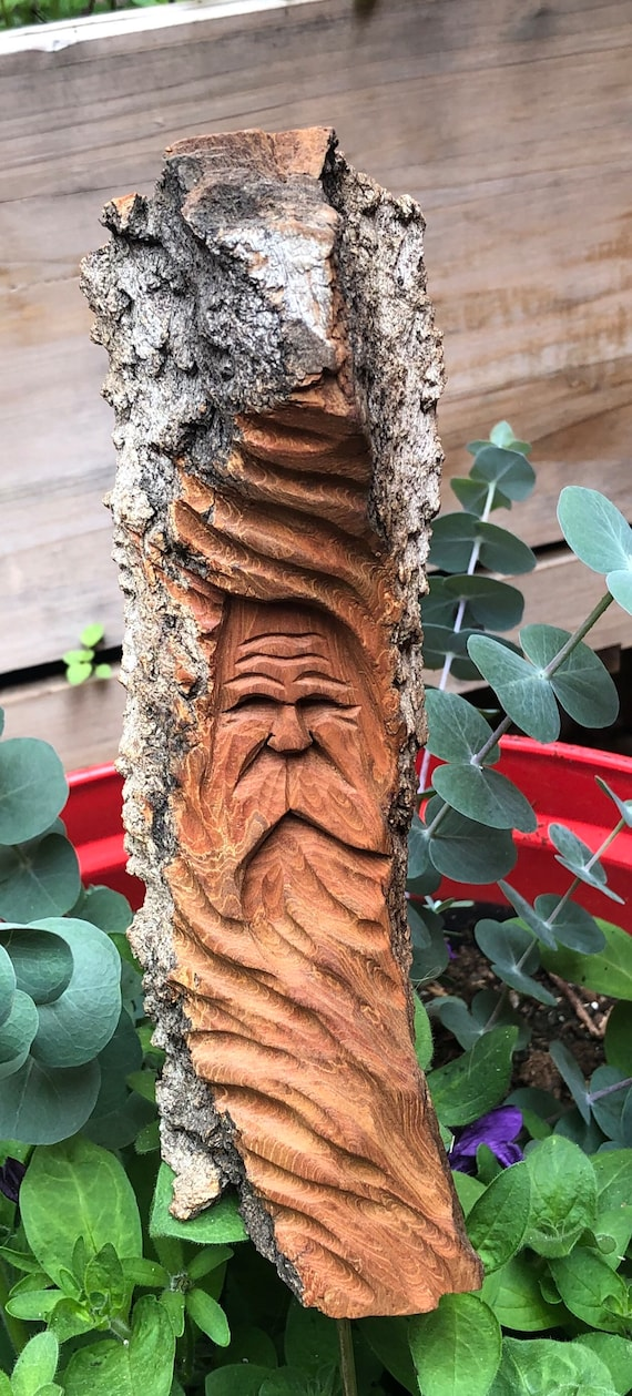 HAND CARVED original Garden Spirit (indoors or out)  from 100 year old Cottonwood Bark