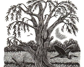 The Willow Tree   *New*